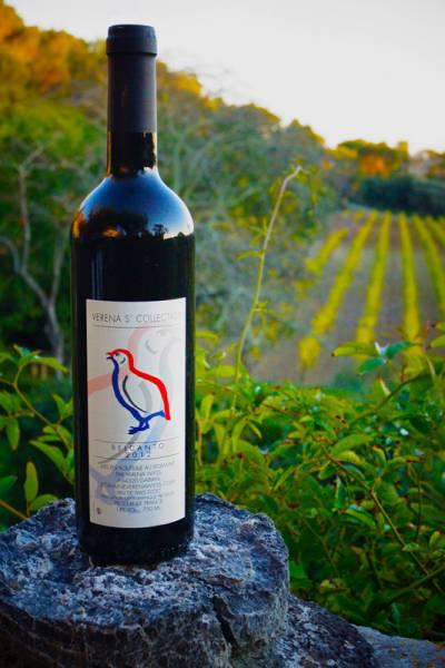 belcanto vin de pays d'oc cabernet sauvignon